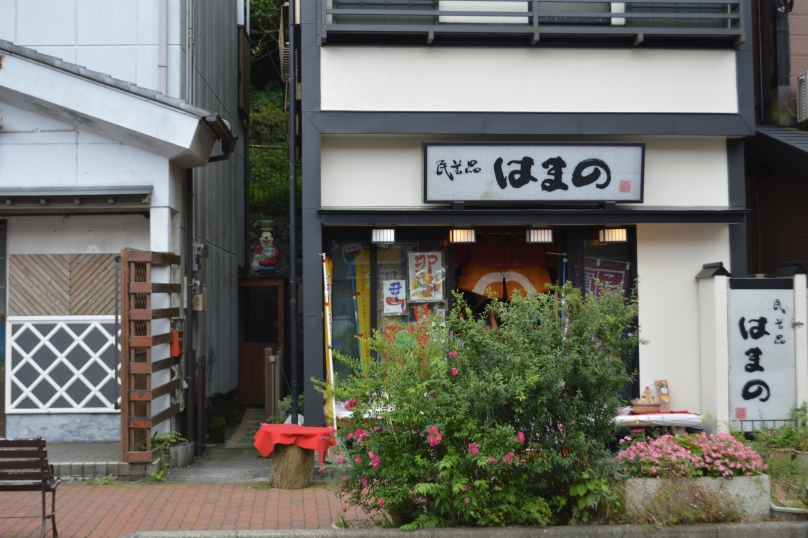 One of the restaurants on the main street in front of Hakone port