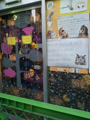 Mostly Japanese signs written on the doors of the owl cafe
