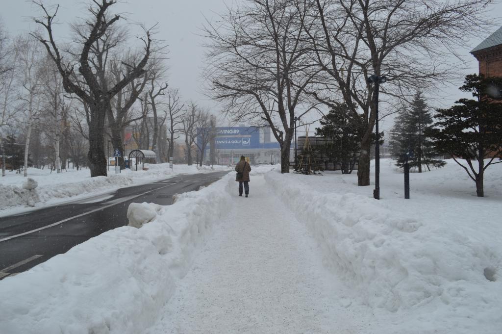 Walking in Sapporo
